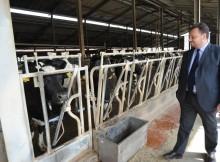 AGRICOLTURA/PSR,FAVA: E' NOSTRO SISTEMA CHE SOSTIENE SVILUPPO RURALE
