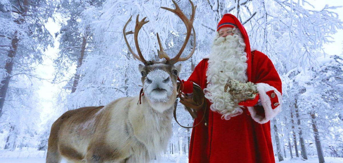 DREAM OF CHRISTMAS