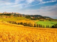 AGRICOLTURA,FAVA: OGGI NASCE LA MACROREGIONE FORESTALE DEL NORD