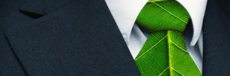 PROGETTI 'GREEN'