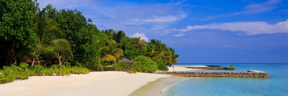 BICOCCA>MALDIVE